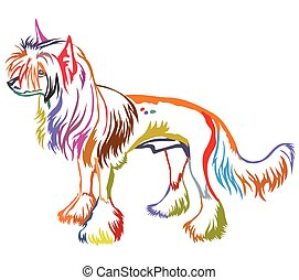 Colorful decorative standing portrait of Chinese Crested Dog...