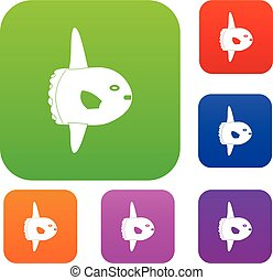 Small fish set color collection - Small fish set icon color...