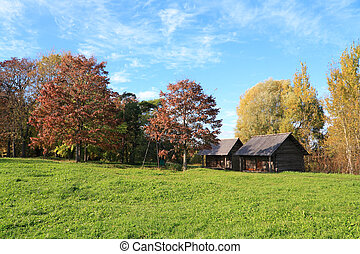 wooden buildings amongst autumn tree