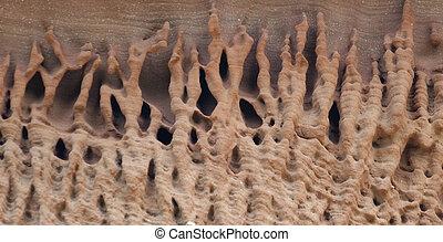 eroded sandstone