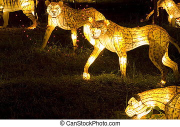 Tiger and Leopard Lanterns - Image of lighted up tiger and...