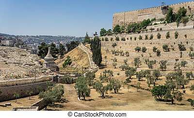 The Kidron Valley in Jerusalem, Israel - The Kidron Valley...