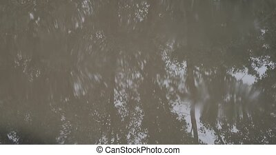 raindrops in a puddle close-up