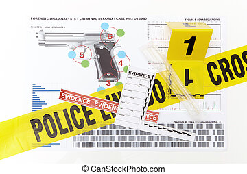 DNA analyses and comparing of victim and suspected -...