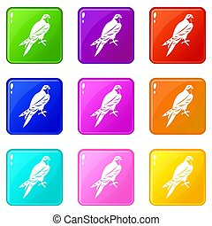 Falcon set 9 - Falcon icons of 9 color set isolated...