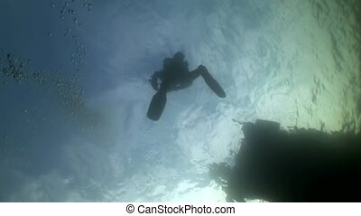 Scuba diver silhouette on background of reflection sunlight...