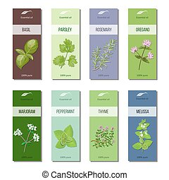 Essential oil labels collection. Basil, parsley, rosemary,...