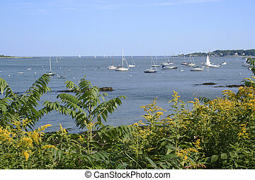 Harbor with boats at anchor - Harbor in Maine with boats...