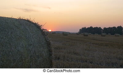 In the field lie haystacks. Evening time, beautiful sunset.