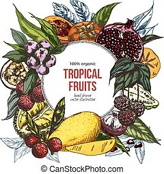 Full color realistic drawn exotic fruits banner - Full color...