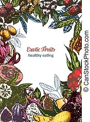 Full color exotic fruits, decorative frame, vector...
