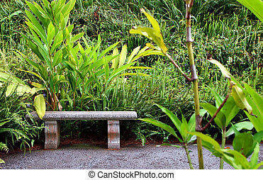 Botanical Garden - Beautiful Kula Botanical Garden Kula Maui...
