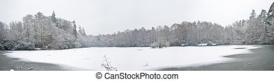 Beautiful large panorama of frozen snow covered lake with tree around perimeter covered in snow