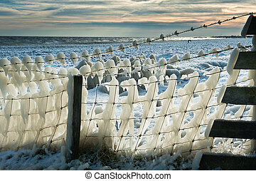 fence covered in ice - cold winter landscape with a fence...