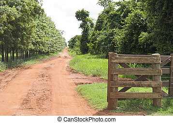 Rural Gate - Rural gate of wood on brazilian farm, northwest...