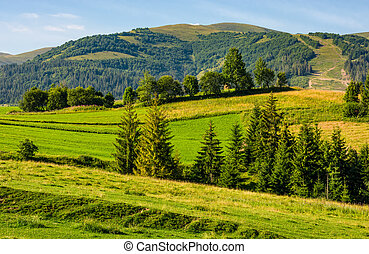 beautiful countryside with trees on hillside. lovely...