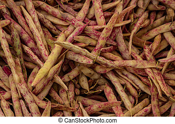 Cranberry beans for sale - A table is filled with cranberry...