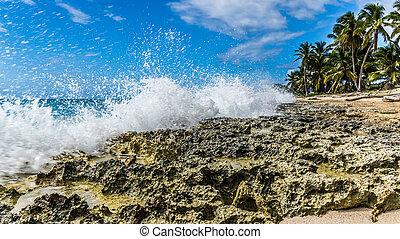 Not the best shutter... - Beach splah