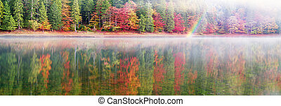 Synevir lake autumn colors - Autumn forest colorful over the...