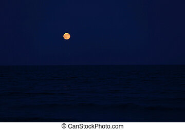 red full moon on the horizon over the sea - Big red full...