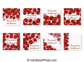 Set of backgrounds with rose petals - A collection of square...