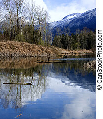 Cheam Wetlands - Mountain reflected in the water at Cheam...