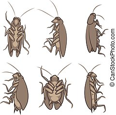 Cockroach - Vector Illustration Of Various Cockroaches From...