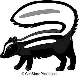 Striped Skunk - illustration striped skunk with tail held up...