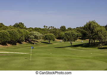Golf Course - Golf course between pine trees with players