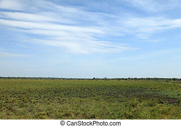 Grassy Plains Landscape - Uganda, Africa - Small Rural...