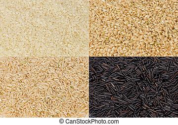 arroz, grãos