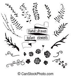 Set of elements of nature for design, silhouettes of flowers, leaves, branches, deer antlers, ribbon banner