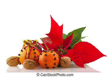 Orange with cloves and Poinsetta - orange with cloves...