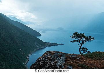Misty morning on Tingvollfjorden flord Vettamyra , More og...
