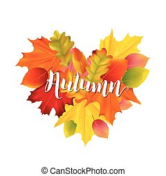 Colorful Autumn Leaves Illustration Design in Vector with place for Text