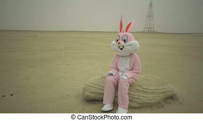 Easter rabbit sits on stone in desert. claps hands by knees....