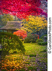 Japanese park by seasonal autumn time
