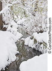 Stream running through Winter forest with deep snow