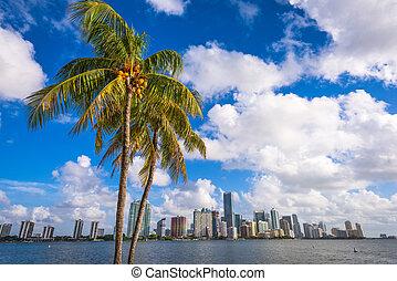 Miami Florida USA - Miami, Florida, USA downtown skyline on...