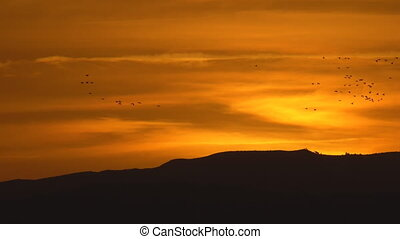 Orange sky sunset over mountain with duck birds flying -...