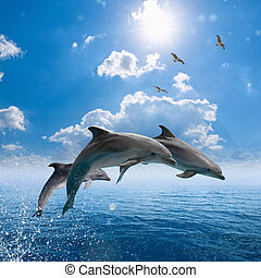 Dolphins jumping out of blue sea, seagulls fly high in blue...