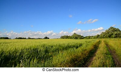 Country landscape with country road - Country landscape with...