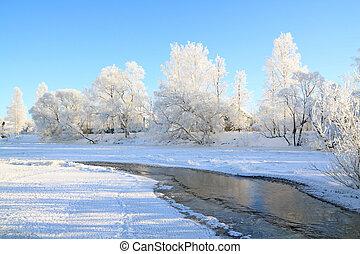 nieve, árbol, Costa, río
