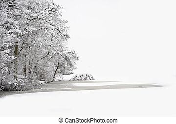 Beautiful Winter forest scene with deep virgin snow and...