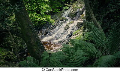 Opening In The Forest With Small Waterfall - Small waterfall...