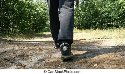 Male feet in sneakers walk along some forest path on a sunny...