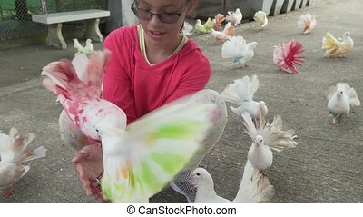 Young girl feeds ornamental pigeons with multi-colored...
