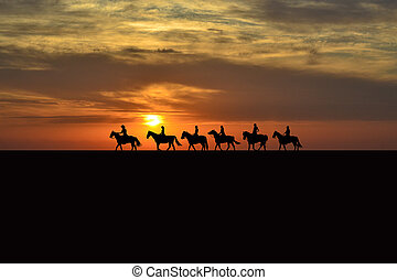 Horse rider silhouettes at sunset - Horse rider silhouettes...