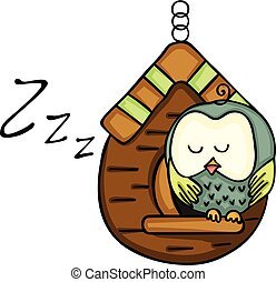 Owl sleeping on wooden cage