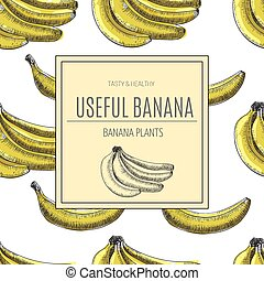 Seamless pattern.bananas of vector sketches.Detailed citrus...
